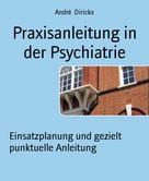 André Dirickx: Praxisanleitung in der Psychiatrie ★★