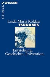 Tsunamis - Entstehung, Geschichte, Prävention