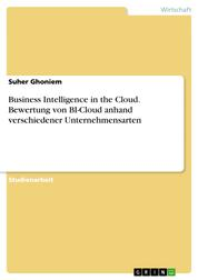 Business Intelligence in the Cloud. Bewertung von BI-Cloud anhand verschiedener Unternehmensarten