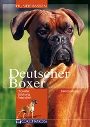 Deutscher Boxer - Charakter, Erziehung, Gesundheit