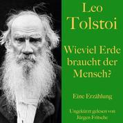 Leo Tolstoi: Wieviel Erde braucht der Mensch? - Eine Erzählung
