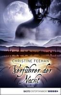 Christine Feehan: Verführer der Nacht ★★★★★