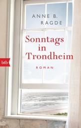 Sonntags in Trondheim - Roman