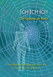Ich. Ich. Ich. Die Spinne im Netz - Das Entsprechungsgesetz und das Gesetz der Projektion