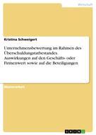 Kristina Schweigert: Unternehmensbewertung im Rahmen des Überschuldungstatbestandes. Auswirkungen auf den Geschäfts- oder Firmenwert sowie auf die Beteiligungen