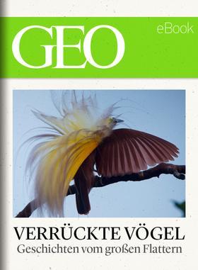 Verrückte Vögel: Geschichten vom großen Flattern (GEO eBook)