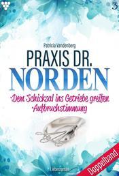 Praxis Dr. Norden 3 – Arztroman - Doppelband