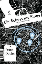 Ein Schuss ins Blaue - Kriminalroman