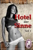 Romy J. Wolf: Hotel der Sinne, Teil 1 ★★★