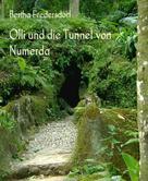 Bertha Fredersdorf: Olli und die Tunnel von Numerda