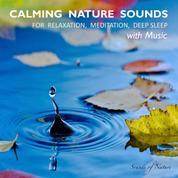 Calming Nature Sounds With Music: Sounds of Nature for Relaxation, Meditation, Deep Sleep - Stress Relief, Soothing New Age Sounds, Music to Calm Down, Singing Birds, Ocean Waves, Forest Sounds, Relaxing Rain, Music for Healing