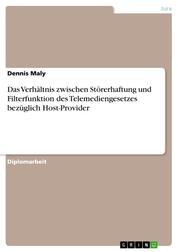 Das Verhältnis zwischen Störerhaftung und Filterfunktion des Telemediengesetzes bezüglich Host-Provider