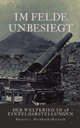 Im Felde unbesiegt - Der Weltkrieg in 28 Einzeldarstellungen