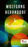 Wolfgang Herrndorf: In Plüschgewittern ★★★★