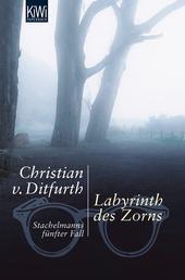 Labyrinth des Zorns - Stachelmanns fünfter Fall