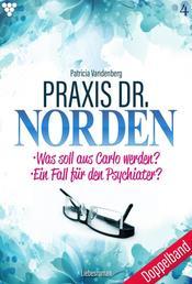 Praxis Dr. Norden 4 – Arztroman - Doppelband