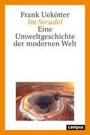 Frank Uekötter: Im Strudel