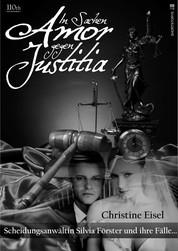 In Sachen Amor gegen Justitia - Scheidungsanwältin Silvia Förster und ihre Fälle