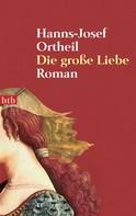 Hanns-Josef Ortheil: Die große Liebe ★★★★