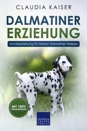 Dalmatiner Erziehung - Hundeerziehung für Deinen Dalmatiner Welpen