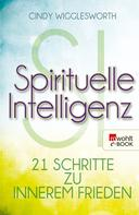 Cindy Wigglesworth: Spirituelle Intelligenz ★★