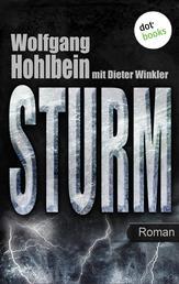 Sturm - Roman. Elementis - Band 3