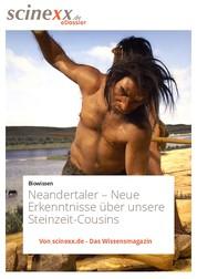 Neandertaler - Neue Erkenntnisse über unsere Steinzeit-Cousins
