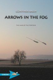 Arrows In The Fog - The Hair Of The Tortoise