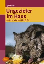 Ungeziefer im Haus - Motten, Mäuse, Käfer & Co.