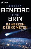 David Brin: Im Herzen des Kometen ★★★★