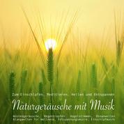 Entspannungsmusik: Naturgeräusche / Naturklänge mit traumhafter Musik zum Meditieren, Heilen und Relaxen - Sanfte Musik mit Ozeanwellen, Wüstengeräuschen, Regentropfen, Vogelstimmen, Vogelgesang