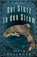 Bernd Desinger: Der Sturz in den Strom ★★★