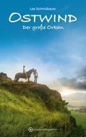 Lea Schmidbauer: Ostwind - Der große Orkan ★★★★★