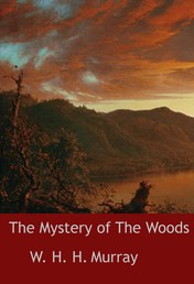 The Mystery of The Woods - novel