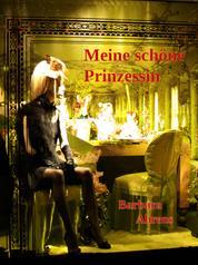 Meine schöne Prinzessin - Eine erotisch-kriminelle Dreiecksgeschichte