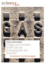 Erdgas aus Schiefer - Shale Gas als Energiequelle der Zukunft?