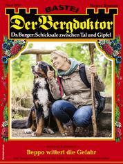Der Bergdoktor 2067 - Heimatroman - Beppo wittert die Gefahr