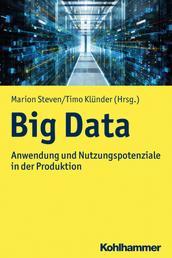 Big Data - Anwendung und Nutzungspotenziale in der Produktion