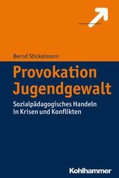Provokation Jugendgewalt - Sozialpädagogisches Handeln in Krisen und Konflikten