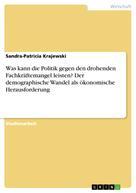 Sandra-Patricia Krajewski: Was kann die Politik gegen den drohenden Fachkräftemangel leisten? Der demographische Wandel als ökonomische Herausforderung