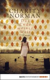 Das Ende meiner Welt - Roman