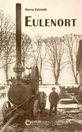 Eulenort - Aus dem unglaublichen Leben des Rudi Kleineich oder Glückssuche in einer harten Zeit