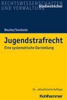 Werner Beulke: Jugendstrafrecht