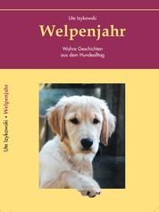 Welpenjahr - Wahre Geschichten aus dem Hundealltag