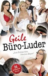 """Geile Büro-Luder - """"Zum Ficktat bitte, Fräulein Meyer"""""""