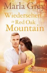 Wiedersehen in Red Oak Mountain - Roman