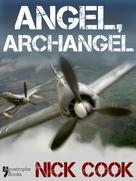Nick Cook: Angel, Archangel