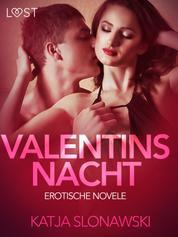 Valentinsnacht: Erotische Novelle