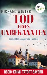 Tod eines Unbekannten: Ein Fall für Assauer und Hammer - Band 3 - Kriminalroman