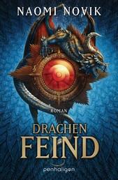 Drachenfeind - Roman